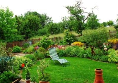 Bepflanzung (1)
