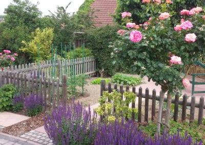 Gestaltete Gärten (26)